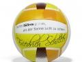 Friedrich Schiller_Volleyball_badboyzballfabrik
